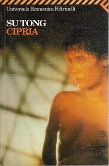 cipria_cover